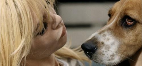Brigitte-Bardot-défend-les-animaux
